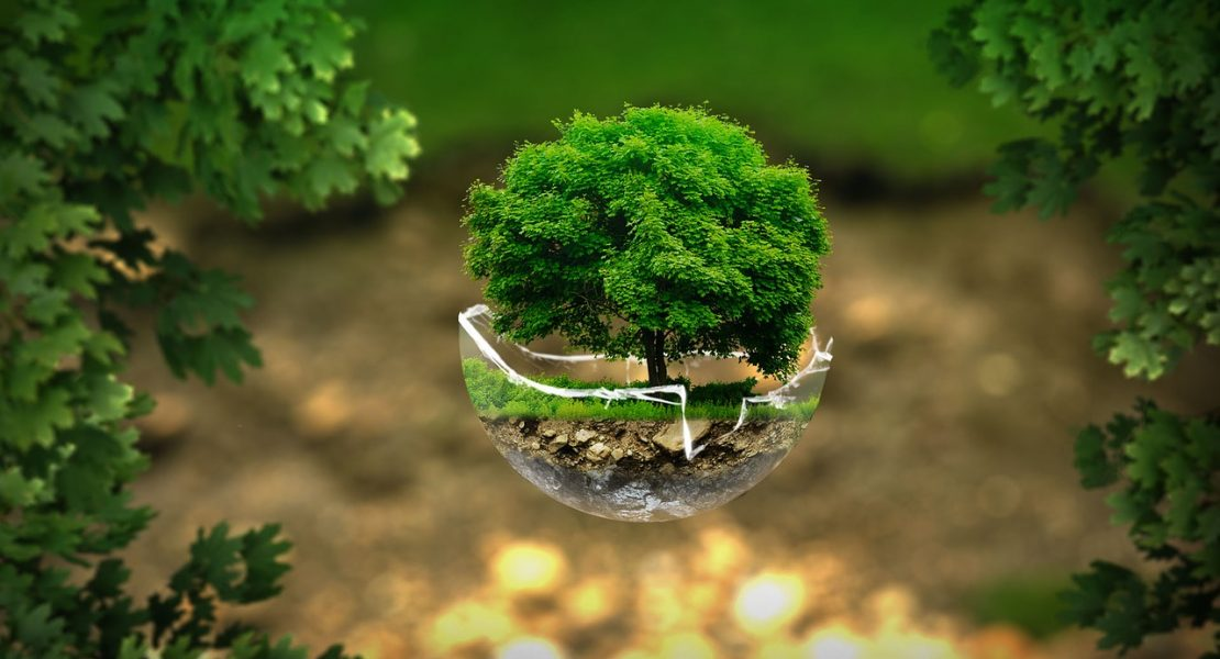 How To Make Your Manufacturing Business Eco-Friendly