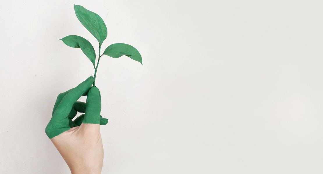 Becoming a sustainable retailer through employee engagement